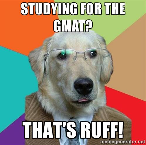 business-dog-studying-for-the-gmat-thats-ruff.jpg